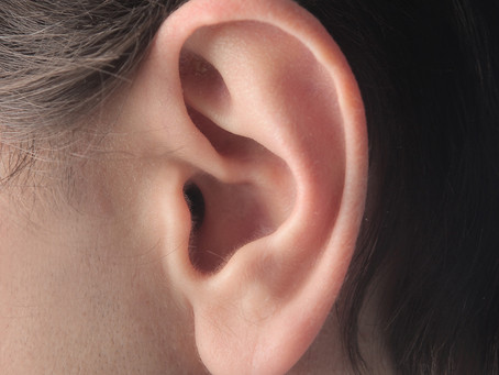 Estudo identifica proteína essencial à diferenciação das células ciliares do ouvido