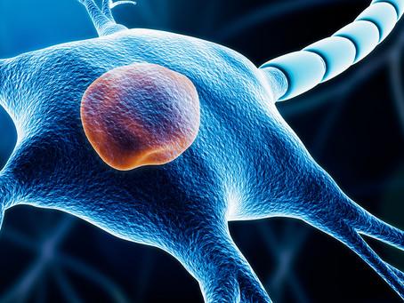 Desenvolvida abordagem imunoterápica para tratamento da esclerose múltipla