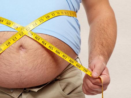Estudo sugere que lipocalina-2 pode tratar obesidade