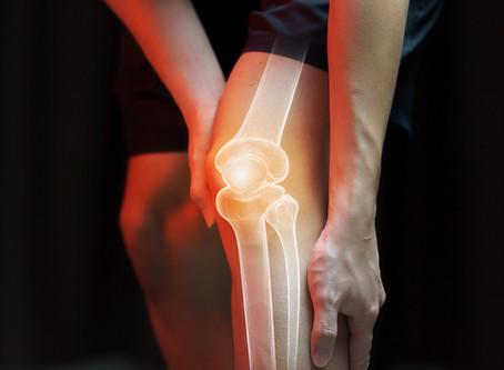 Terapia gênica mostra sucesso contra osteoartrite e obesidade