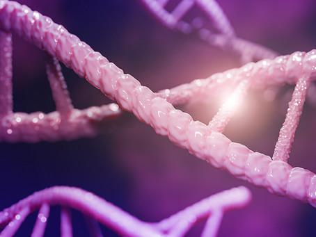 Quantidade de variantes genéticas raras no nascimento determina vida útil