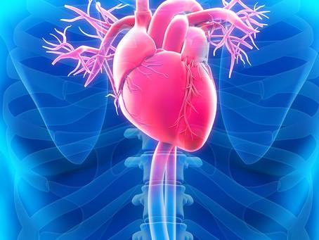 Metabolômica da TRH é crítica no risco de doença coronariana após menopausa