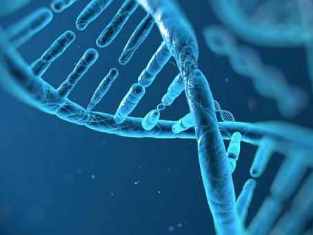 Bloqueio do reparo do DNA se mostra promissor para o tratamento de câncer