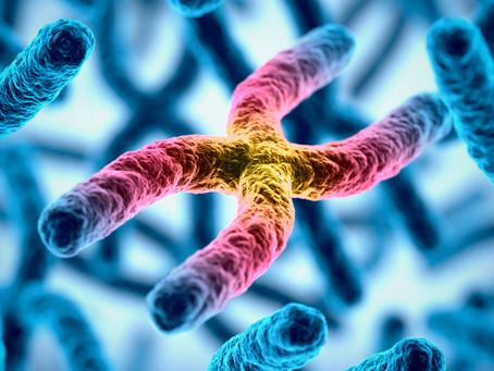Cromotripsia favorece expressão de oncogenes e resistência medicamentosa