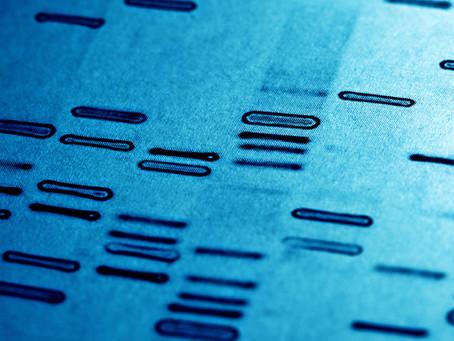 Estudo confirma benefício de teste farmacogenético ligado à miopatia por estatinas