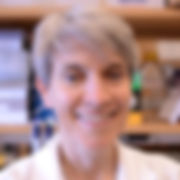 Nicola Mason, PhD, DACVIM, Penn Vet