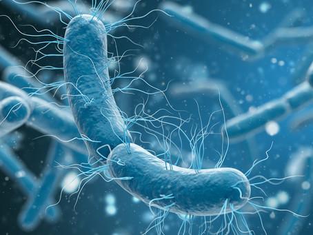 Interação entre microbioma e carga genética na esclerose múltipla