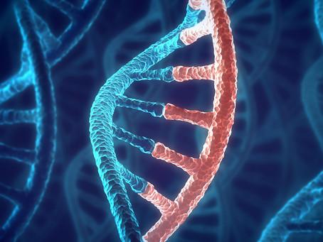 Genes de RNA ligados ao citoesqueleto promovem metástase no câncer de mama