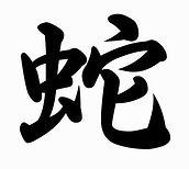 Тату иероглиф змея (Тату восточный гороскоп)
