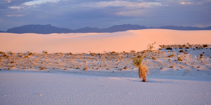 White Sands Hot n' Cold