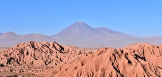 Catarpe, Atacama