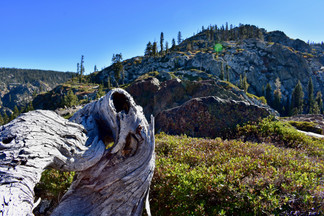 Dry Sierra above Jamison