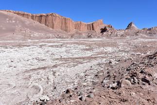 Salty Valle de la Luna