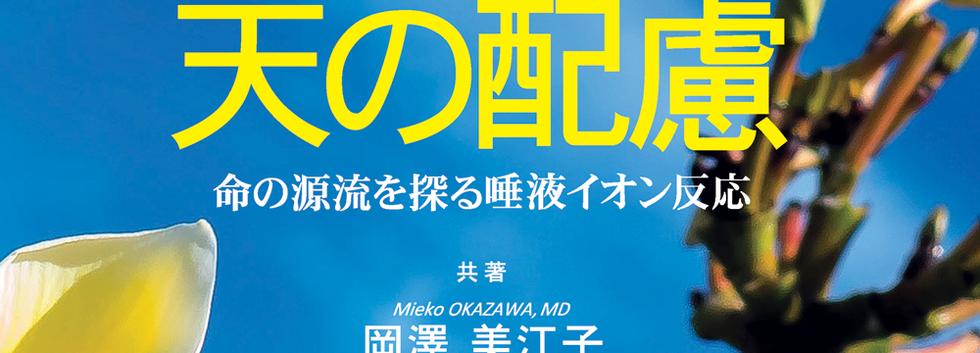 天の配慮 日本語版 A4表紙.png