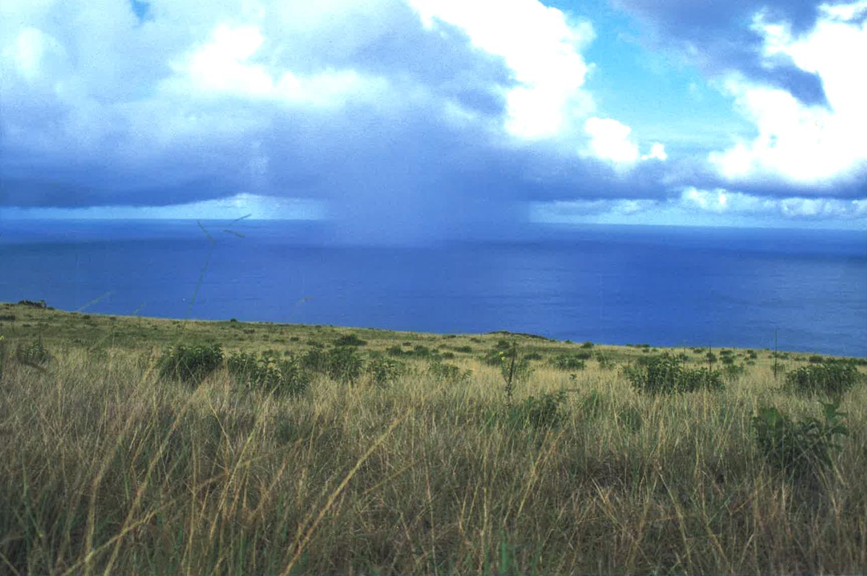 6 ISLA DE PASCUA(イサレデ・パスクア)=イースター島