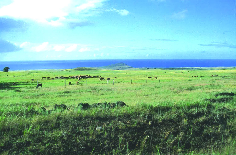 12 ISLA DE PASCUA(イサレデ・パスクア)=イースター島