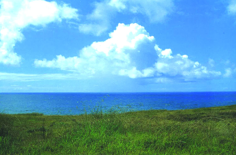 8 ISLA DE PASCUA(イサレデ・パスクア)=イースター島