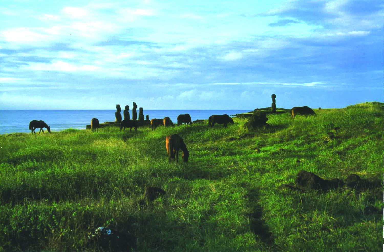 14 ISLA DE PASCUA(イサレデ・パスクア)=イースター島