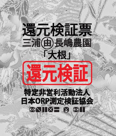 三浦長嶋農園大根-検証票