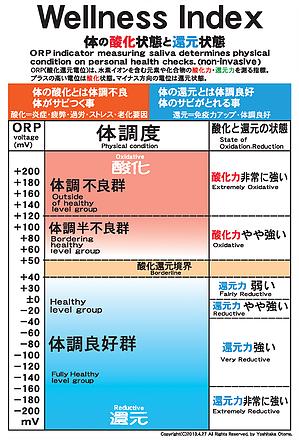 ORP測定 体調度確認表
