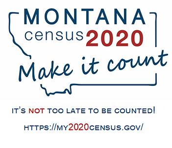 census1.png