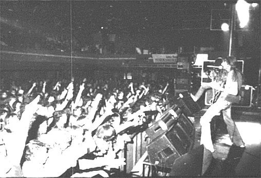 Predatur and crowd