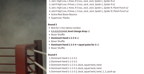 Boxing Workout # 3