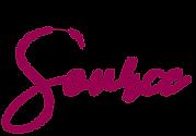 Webstore Source logo.png
