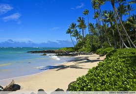AICI Annual Conference Honolulu, Hawaii Join Us In Paradise!