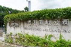 香港濕地公園_植物(高小).png