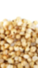 Cooked White Sorghum (Zoomed).jpeg