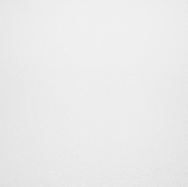 Bianco Assoluto - Lithos