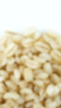 Cooked Japanese Sweet Barley (Zoomed).jp