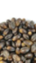 Cooked Black Barley (Zoomed).jpeg