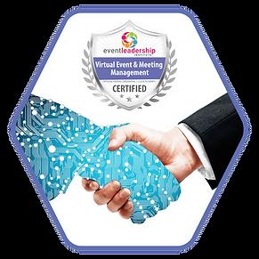 Web DMS Purple Hex HANDSHAKE.png