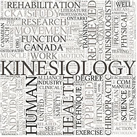 Kinesiology word association graphic