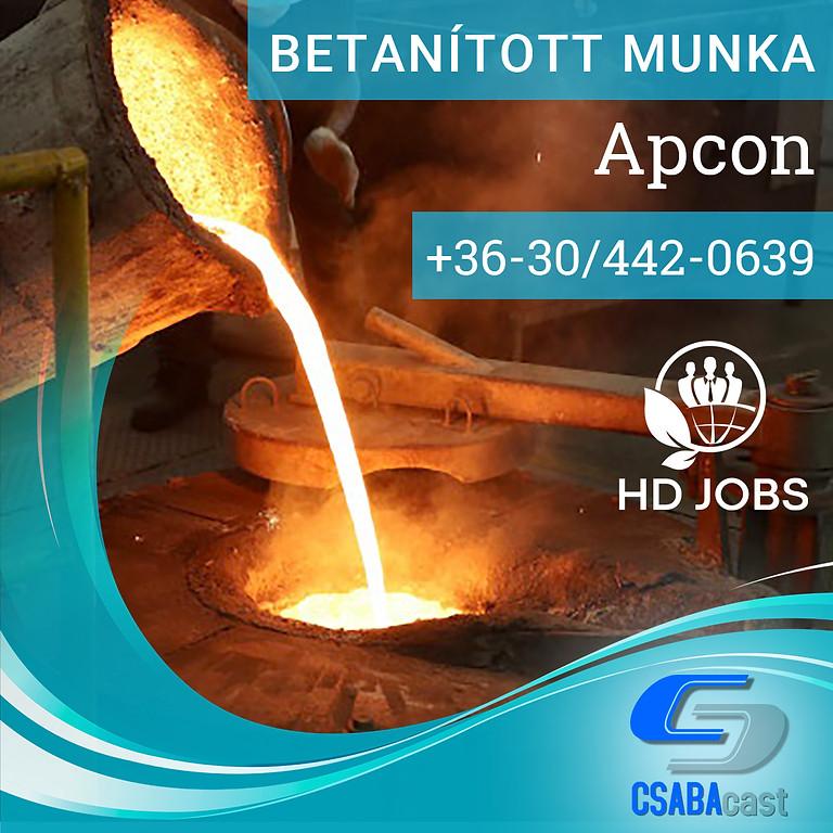 Betanított munka Apcon