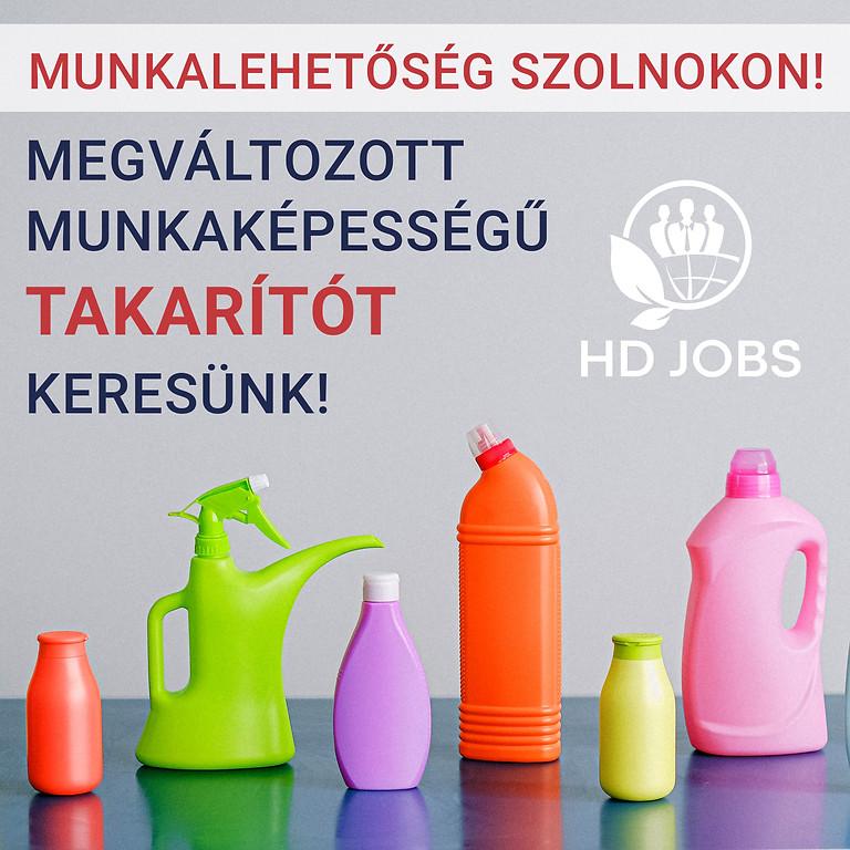 Megváltozott munkaképességű takarító (Szolnok)