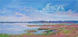 Chincoteague Island Wetland