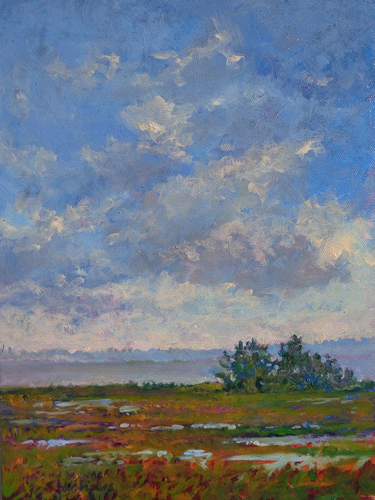 Changing Skies at Chincoteague