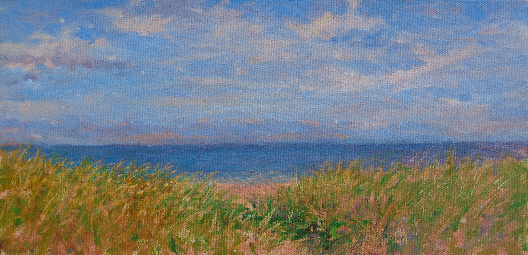 Ocean City Beach and Grass
