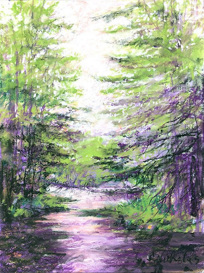 Pine Paths