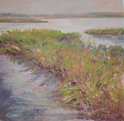 Wet Land Grasses