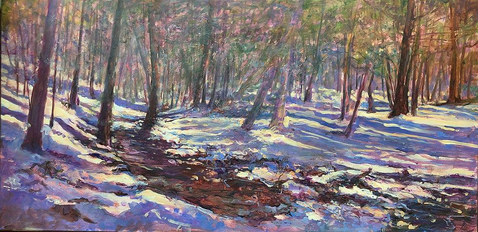Snow Path to the Light