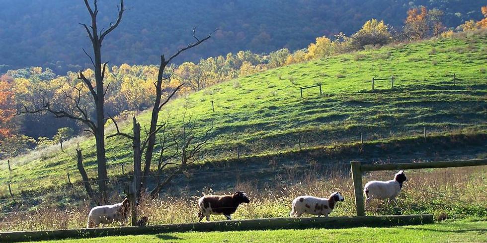 October 2018 Hameau Farm Studio Artist Retreat