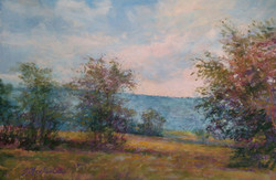 Golden Meadow