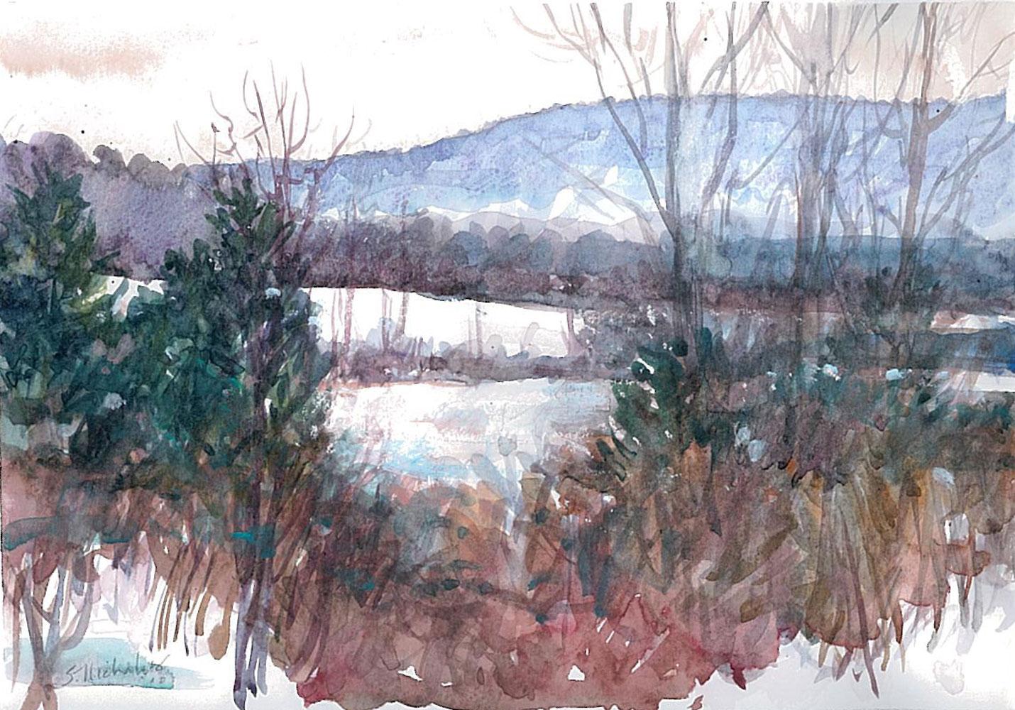 Tussey Mountain Snow View