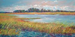 Chincoteague Wetland Waters