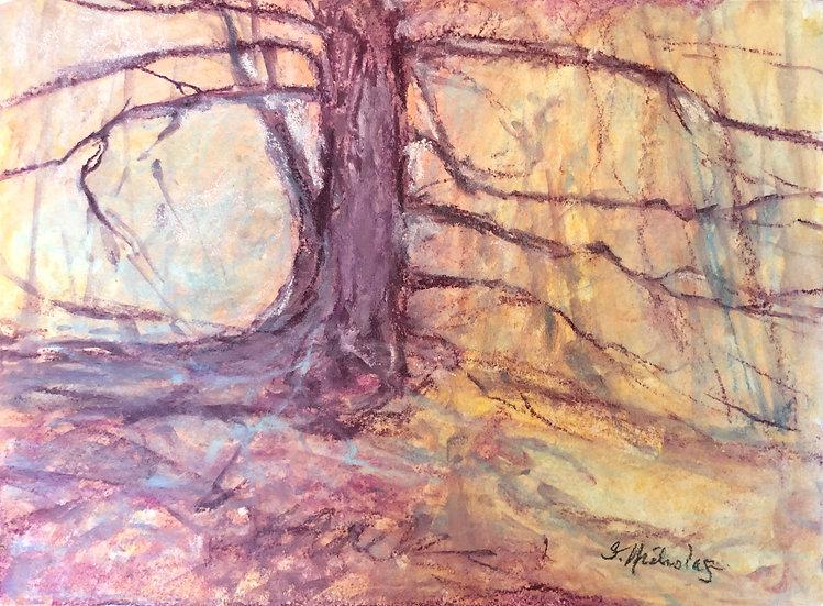 Light Behind the Tree, Study