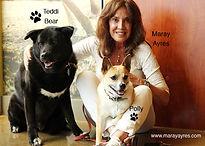 Maray Ayres Dogs/Card